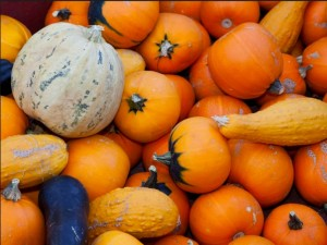 5 Unique Uses for Pumpkin This Fall